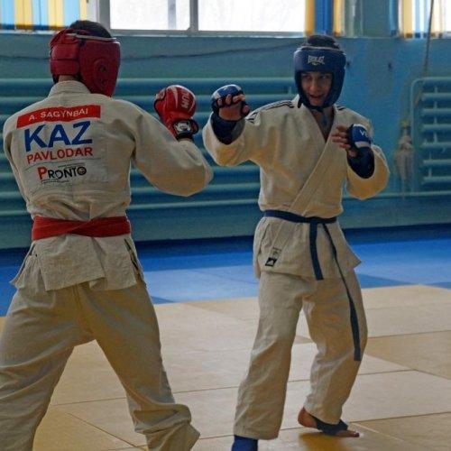 V-ый ежегодный открытый чемпионат Павлодарской области по боевому Джиу-Джитсу